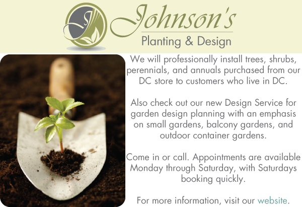 Johnson's Planting & Design Service