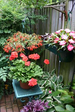 Photo of Container Gardening